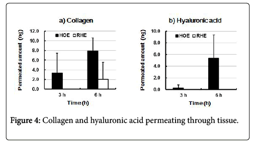 biology-and-medicine-hyaluronic