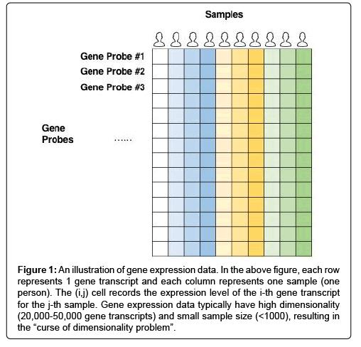 Deep Learning Methods for Predicting Disease Status Using Genomic Data