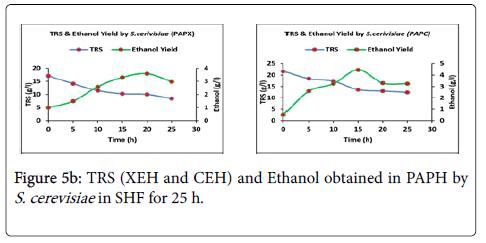 bioprocessing-biotechniques-ethanol