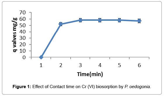 bioremediation-biodegradation-Contact-time