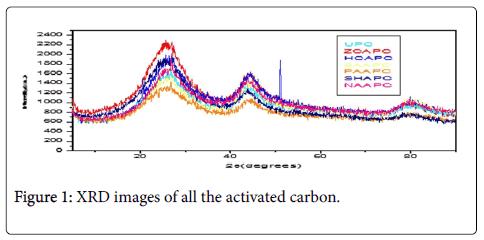bioremediation-biodegradation-activated-carbon