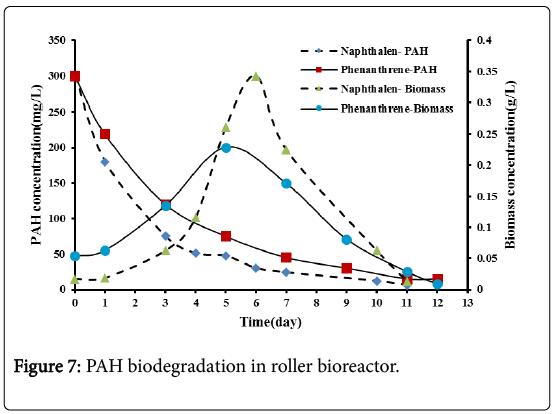 bioremediation-biodegradation-roller-bioreactor