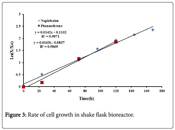 bioremediation-biodegradation-shake-flask