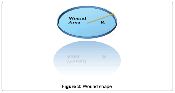 biosensors-journal-Wound-shape