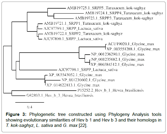 biotechnology-biomaterials-Phylogeny-Analysis