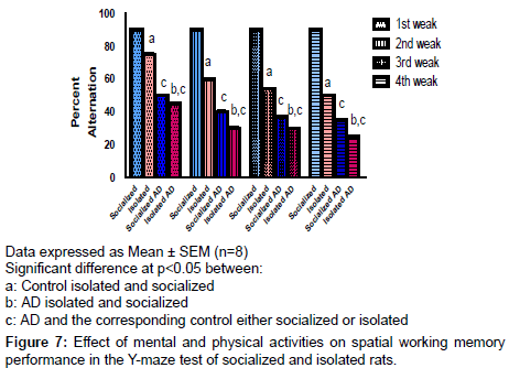brain-disorders-therapy-spatial-working
