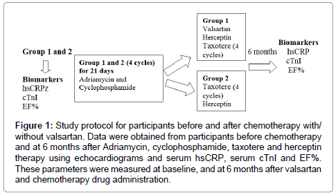 cancer-science-therapy-Study-protocol