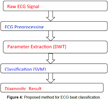 cardiovascular-pharmacology-ECG-beat-classification