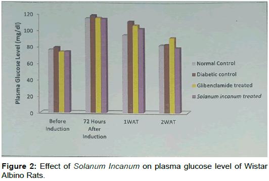 cardiovascular-pharmacology-Effect-Solanum-Incanum