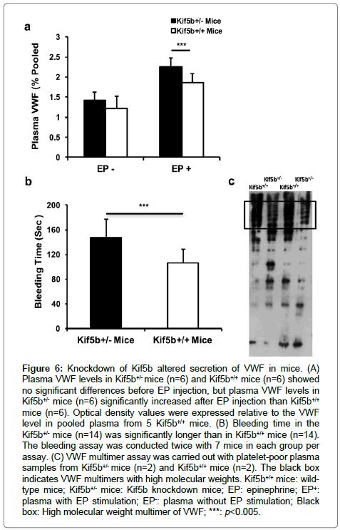 cardiovascular-pharmacology-altered-secretion