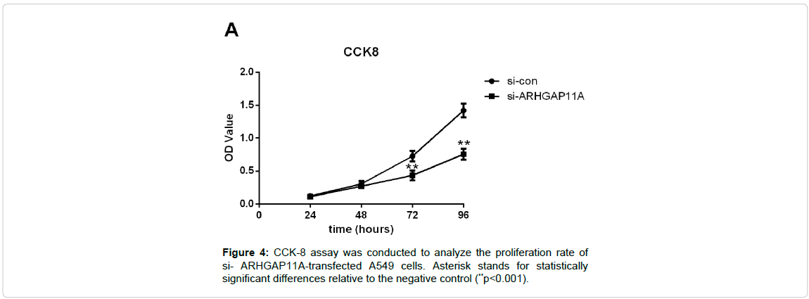 cellular-molecular-biology-proliferation-rate