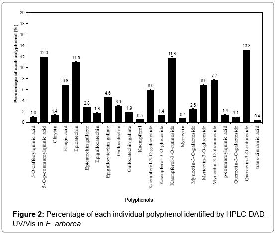 chromatography-separation-techniques-individual-polyphenol