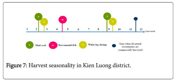 coastal-development-kien-luong