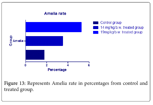cytology-histology-amelia-rate