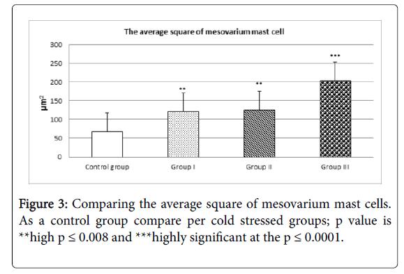cytology-histology-fibrin-strands-average-square