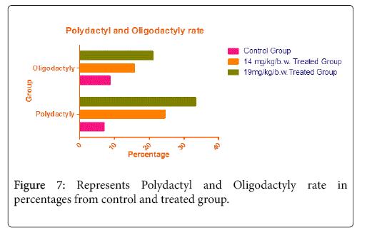 cytology-histology-oligodactyly