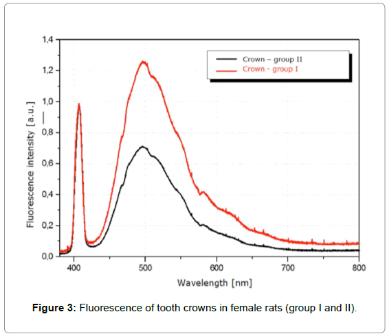 dentistry-crowns-female-rats