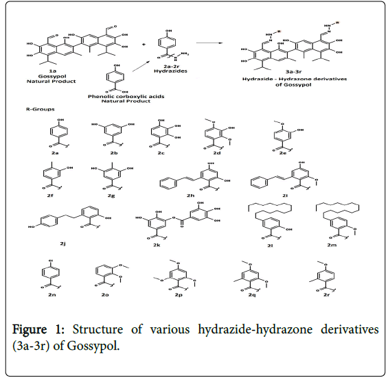 drug-designing-hydrazide-hydrazone