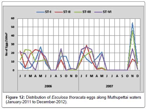 earth-science-climatic-change-Esculosa-thoracata
