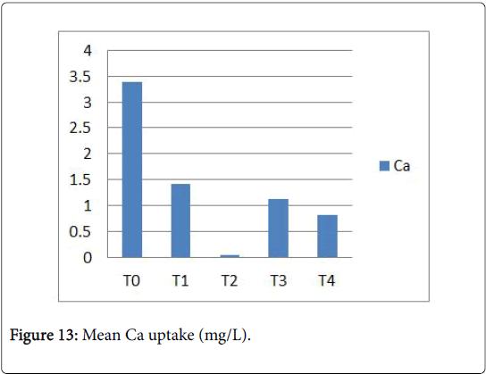 ecology-toxicology-Ca-uptake