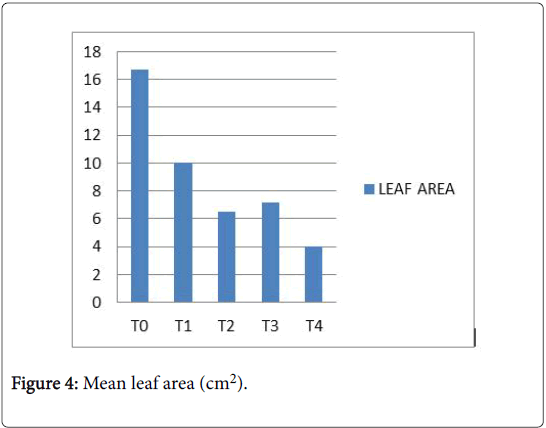 ecology-toxicology-Mean-leaf