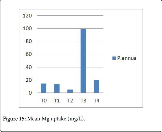 ecology-toxicology-Mean-uptake