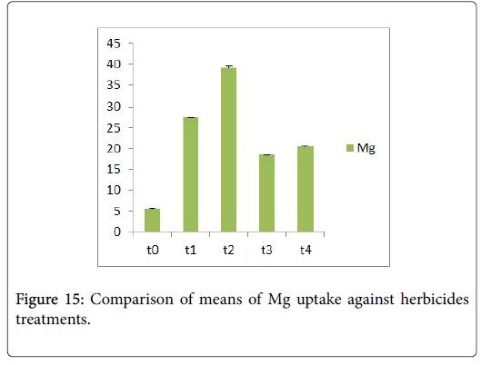 ecology-toxicology-Mg-uptake