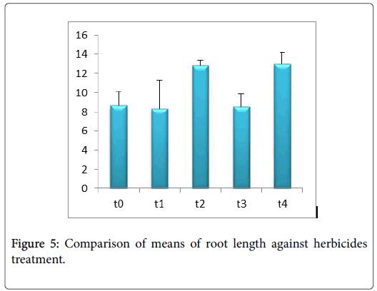 ecology-toxicology-length