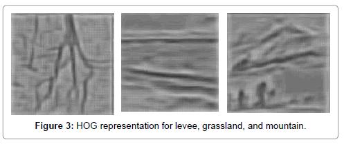 ecosystem-ecography-representation-levee