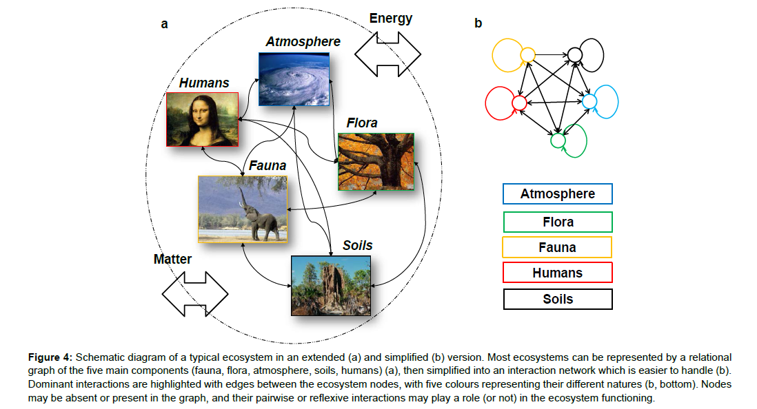 Physical Concepts and Ecosystem Ecology: A Revival?