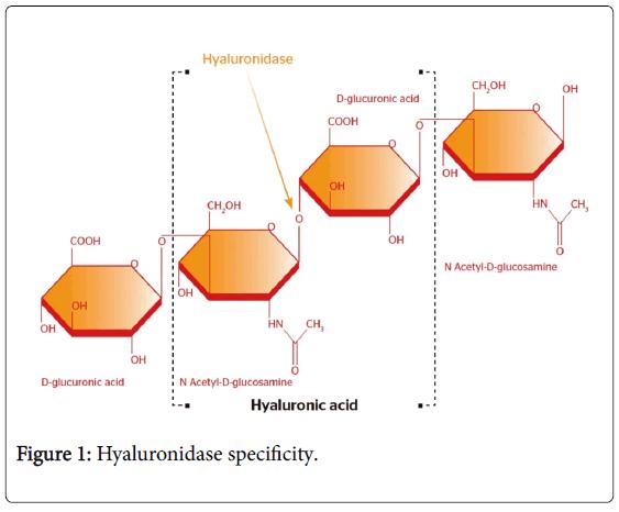 emergency-medicine-hyaluronidase-specificity