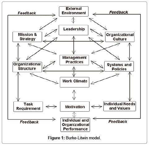 burke litwin model of organizational change