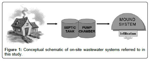 Vor-Ort-Abwassersysteme: Untersuchung der Dynamik und der täglichen ...