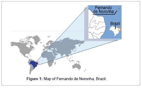 environmental-analytical-toxicology-Fernando-de-Noronha