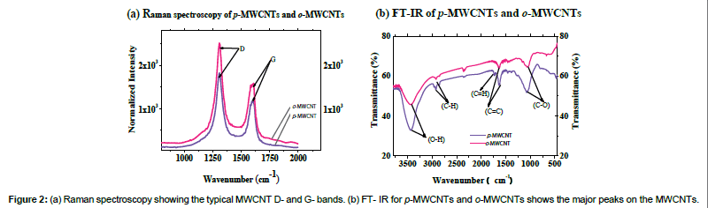 environmental-analytical-toxicology-Raman-spectroscopy-MWCNT