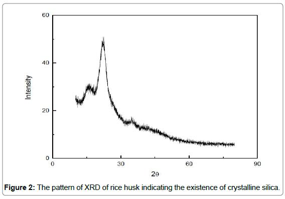 environmental-analytical-toxicology-crystalline-silica
