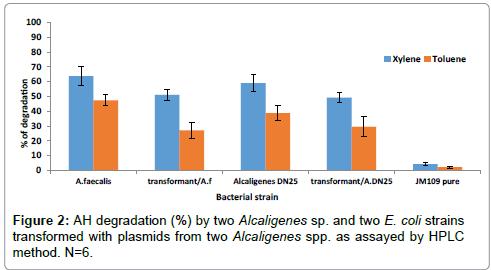 environmental-analytical-toxicology-degradation