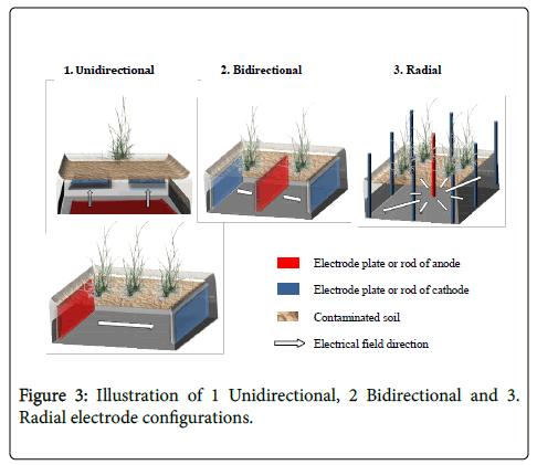 environmental-analytical-toxicology-electrode