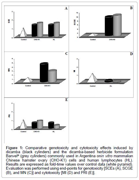 environmental-analytical-toxicology-genotoxicity