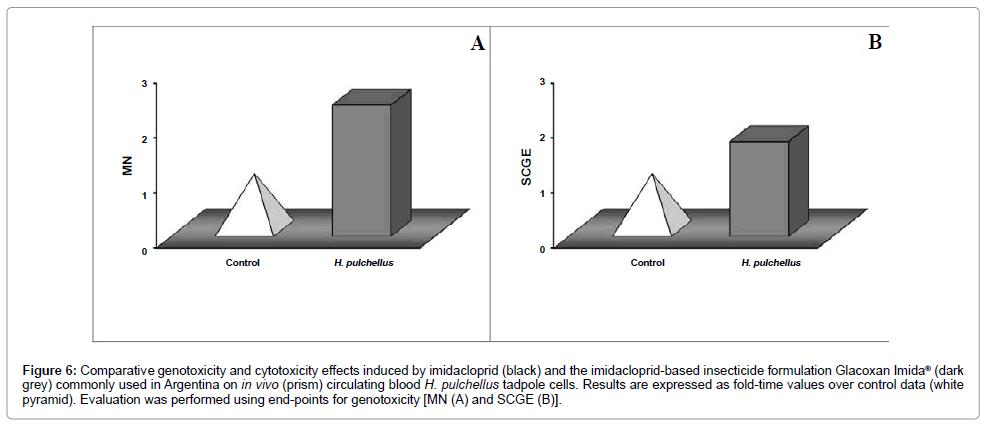 environmental-analytical-toxicology-imidacloprid-based