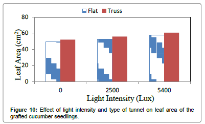 environmental-analytical-toxicology-light-intensity-tunnel-leaf-area