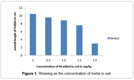 environmental-analytical-toxicology-metal-soil