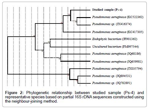 environmental-analytical-toxicology-rDNA-sequences