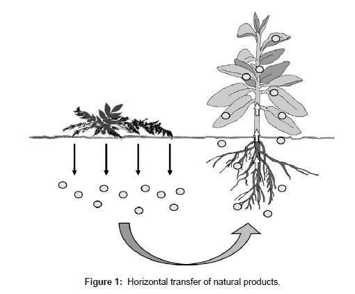 environmental-analytical-toxicology-transfer-natural