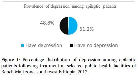 epilepsy-public-health-facilities