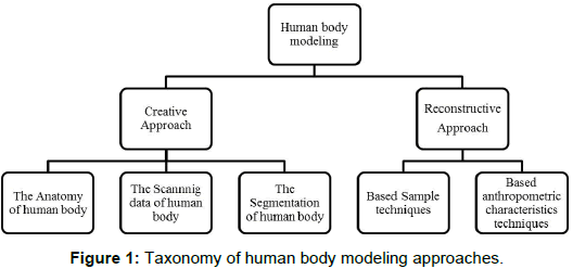 ergonomics-Taxonomy-human-body
