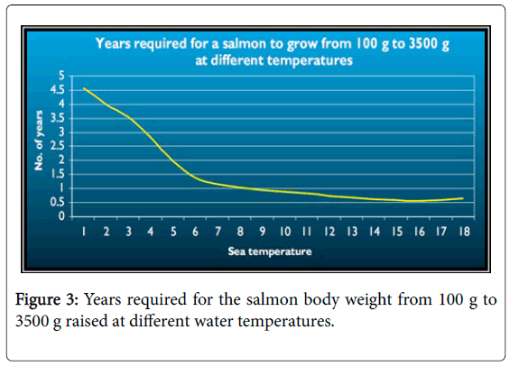 fisheries-and-aquatic-salmon-body-weight