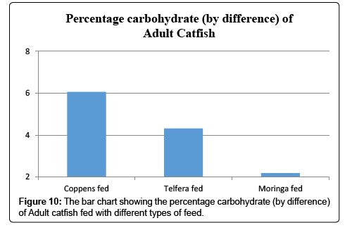 Proximate Analysis and Nutritional Value of African Catfish