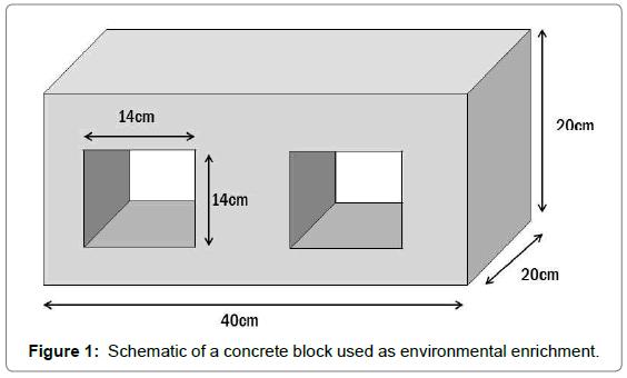 fisheries-livestock-production-concrete-block-environmental