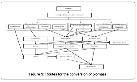 fundamentals-renewable-energy-applications-biomass